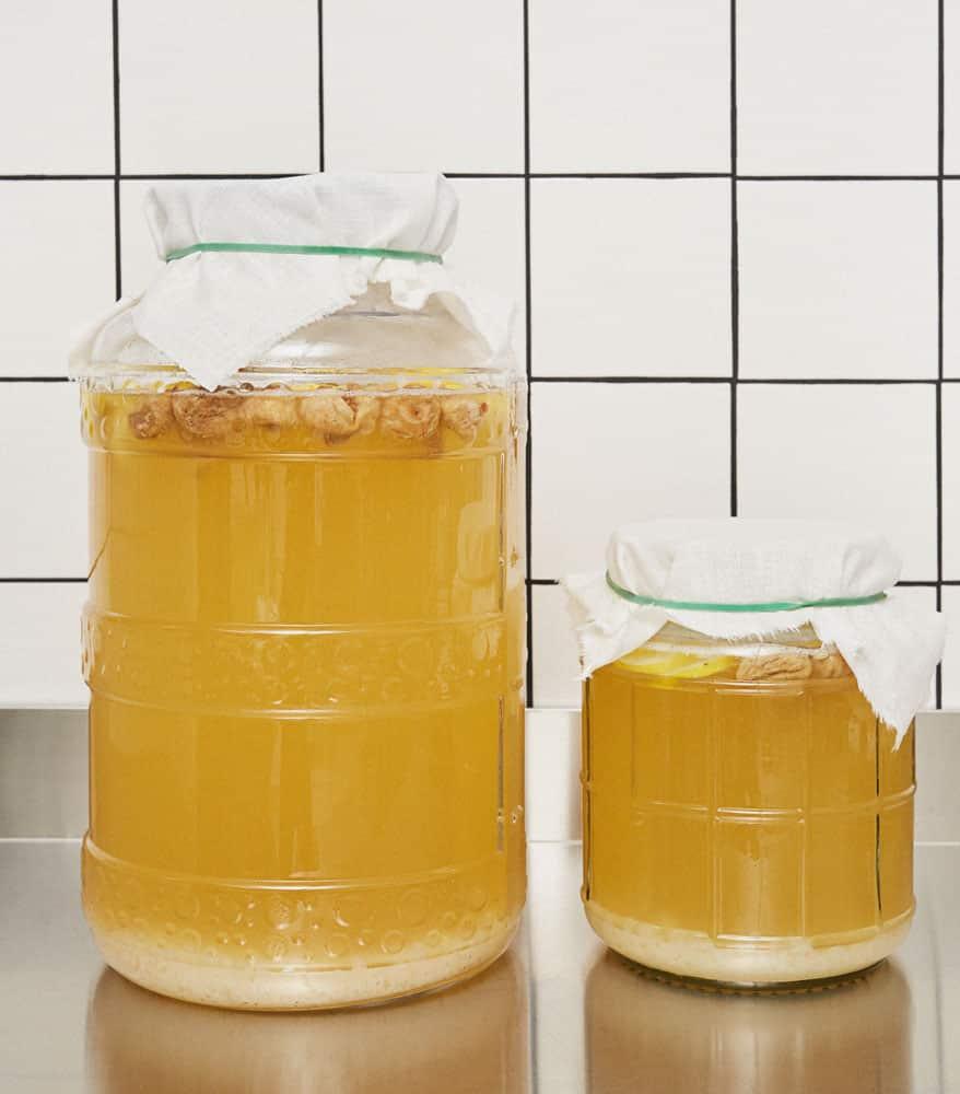 Cuves de fermentation kéfir de fruits